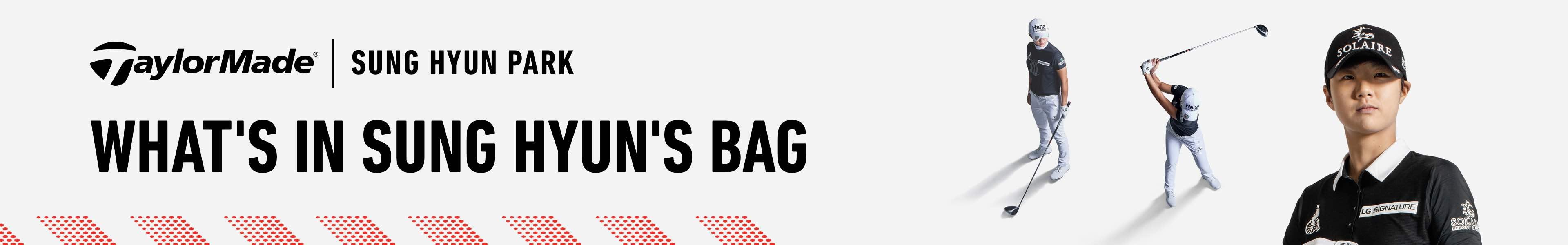 SH Park's Bag
